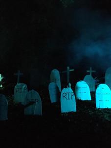 Woodland Graveyard