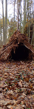 Ferny Crofts Shelter Build