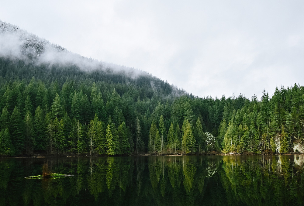 Travel to Vancouver, Canada   FTLO Travel   Group Trips for Young Professionals