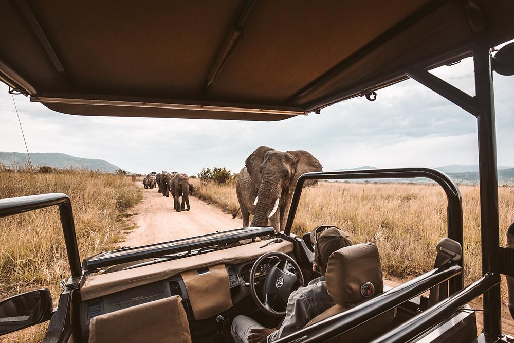 FTLO Travel | 2020 travel bucket list
