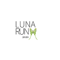 LUNA RUN (1).png