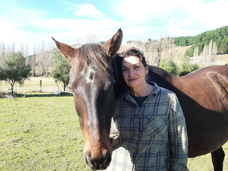 Healing power of horses in addiction