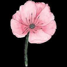 fleur anemone therapie danse oriana tard