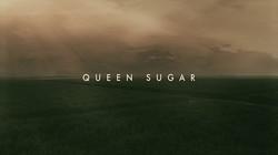 Queen_Sugar_Title_Card