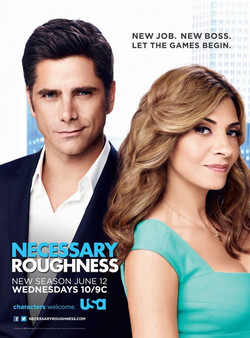 Necessary-Roughness-Poster-Season-3