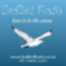 Seabird Radio.png