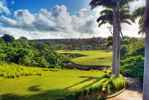 Golf-in-Barbados W.jpg