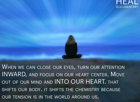 HEAL 見どころ(Vol.8)「瞑想、そして喜びや感謝のイメージは、あなたが自ら作りだす最良のホルモン療法」