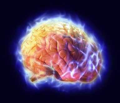 「思考と感情が、心(意識)となり、シグナルになって、身体(細胞)を変える」①