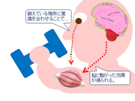 消化と吸収を助ける「ヨガ的な食事」② 【by 平田ホリスティック教育財団 理事 丸元康生】