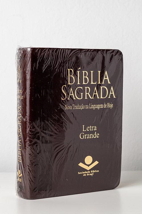 Bíblia Sagrada - Letra Grande - SBB NTLH