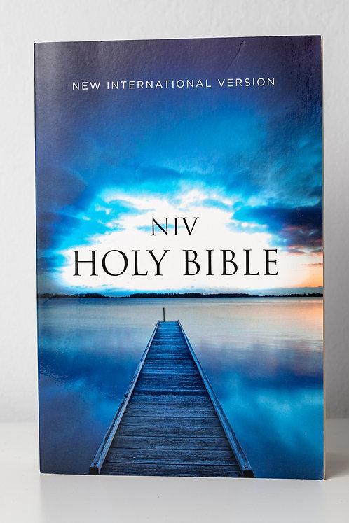 NVI Holy Biblie