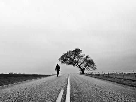 Stewardship and Highway 20
