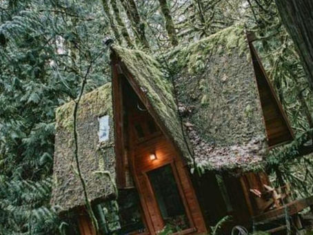 There's A Cottage In The Ferns