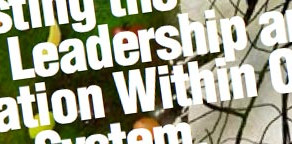Harvesting The Energy of Leadership and Innovation within Our Education System