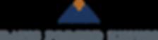 DFK logo.png