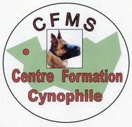 Logo FT.jpg