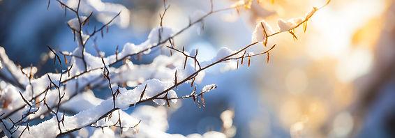 winter_kerst_herinneringen.jpg