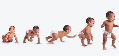 Crawling-Walking-02.jpg