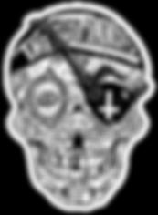 zannies skull.png