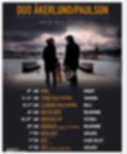 swedish duo poster.jpg