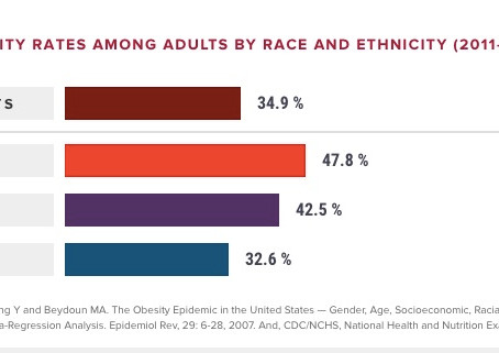 Combatting Health Disparities: Obesity