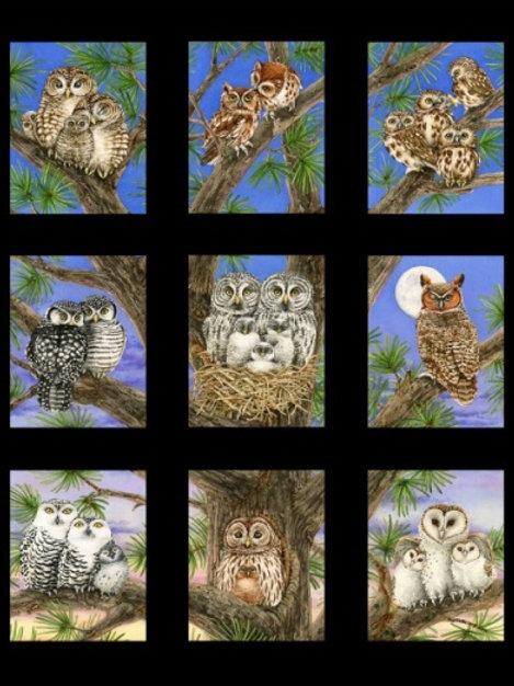 """Studio E Owl Blocks Black Panel 60cm (24"""") Quilt Fabric 4325-Cream"""