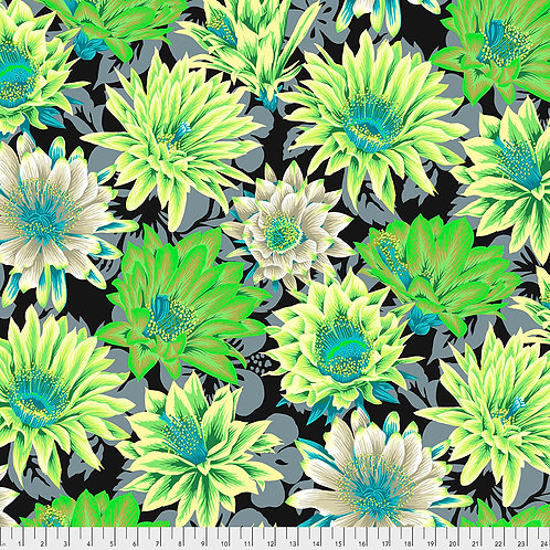 Kaffe Fassett Feb2021 - Cactus Flower PJ096 CONTRAST