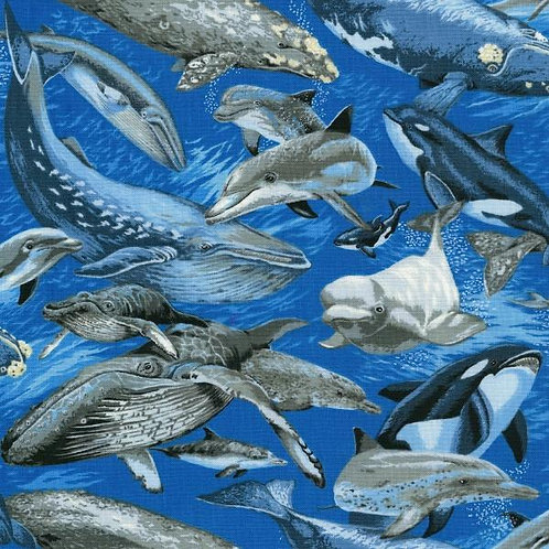 Nutex Novelty Whale Watch Quilt Fabric