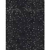 Robert Kaufman Santa's Big Night Black / White 67560/919 Quilt Fabric