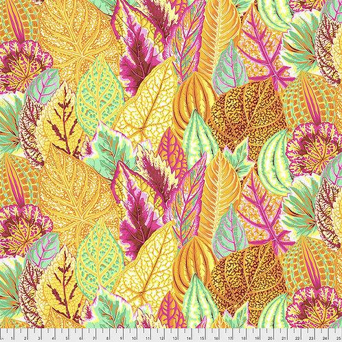 Kaffe Fassett Feb2020 - Coleus PWPJ030 YELLOW Quilt Fabric