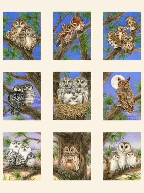 """Studio E Owl Blocks Cream Panel 60cm (24"""") Quilt Fabric 4325-Cream"""