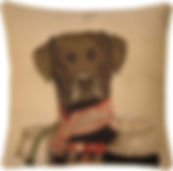 Thierry Poncelet Cushions