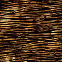 Island Batiks IKF13H-W2 Dark Brown & Black Quilt Fabric