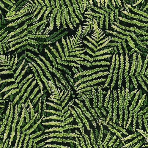 Nutex Kiwiana Forest Fern Green & Black Quilt Fabric
