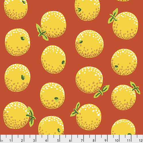 Kaffe Fassett Feb2020 - Oranges PWGP177 YELLOW Quilt Fabric