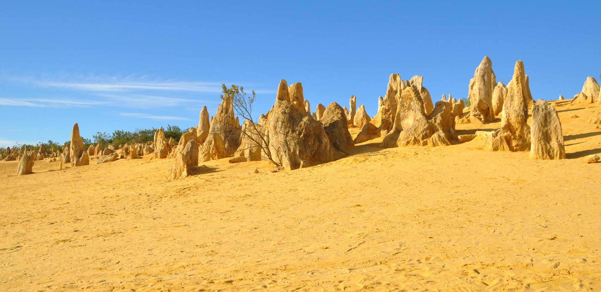 Pinnacles desert - Australie.JPG