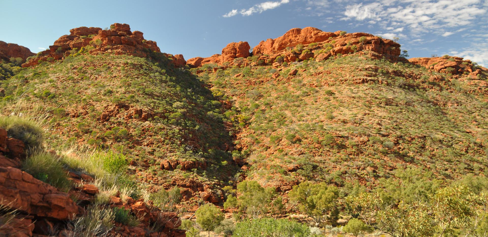 On the road- West Australia .JPG