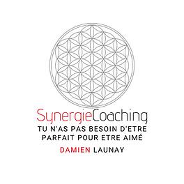 logo damien launay.png