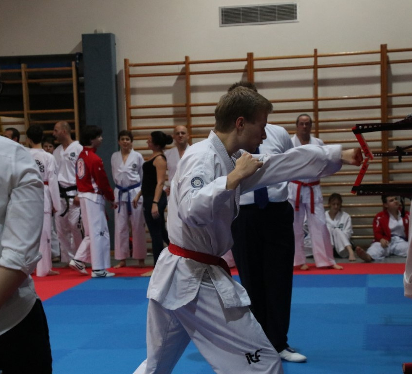 Special power Cup 12 (14)
