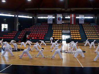 Offener Taekwon-Do Bundeslehrgang in Wien