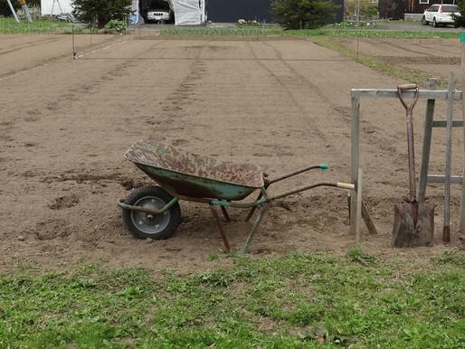 田の土を起こし ジャガイモを先行植え付け