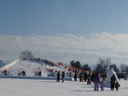 冬のお祭りは温かな雰囲気 !  東川町の寒い中の氷まつりです