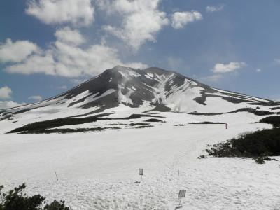 残雪と高山植物の旭岳 妻と雪原散歩 2013