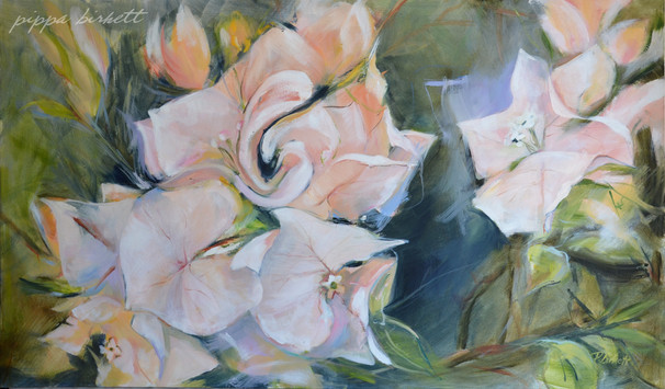 Adas joy in bloom