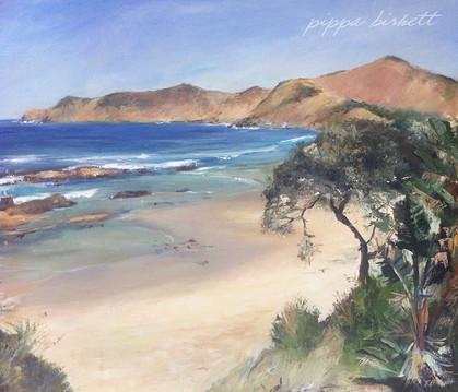 Transkei Beach