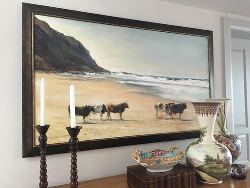 Transkei Cows