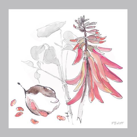Cards 145mm - floral.jpg