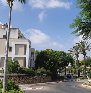 Ra'anana West_Centre.png