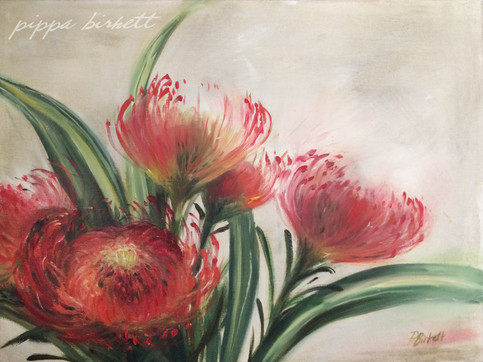 Pincushion Proteas
